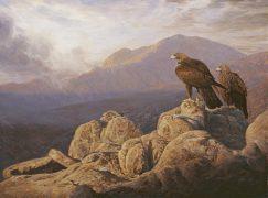 Cuadro de Aguila Real