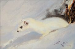 Stoat painting