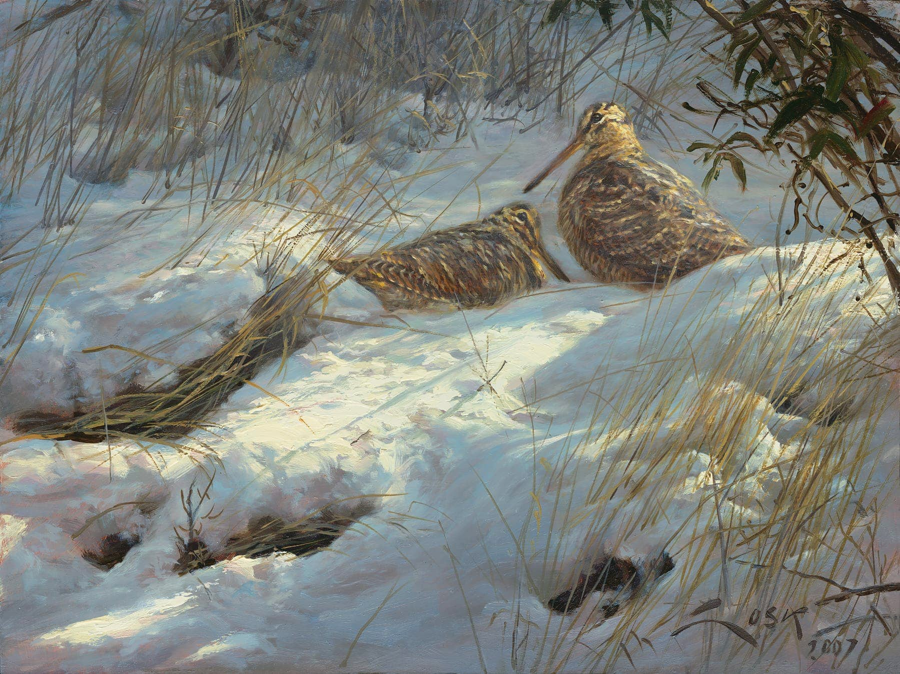 Painting of a Eurasian Woodcock in the snow