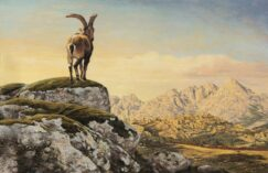 Spanish ibex painting