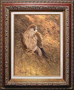 European Kestrel (Falco tinnunculus) painting