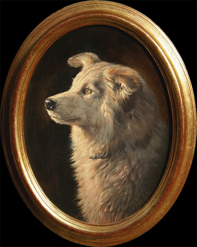 Dog portrait - oil painting