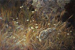 Картина зайца в траве