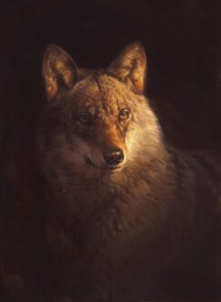 Painting of wolf. Painting of wolves.