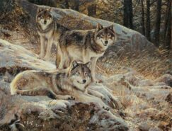 Painting of wolves in the snow