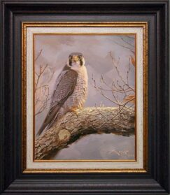 Peregrine falcon painting