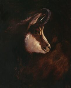 Painting of a Chamois