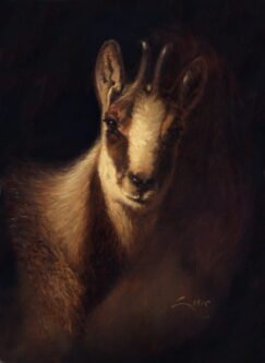 Painting of Chamois