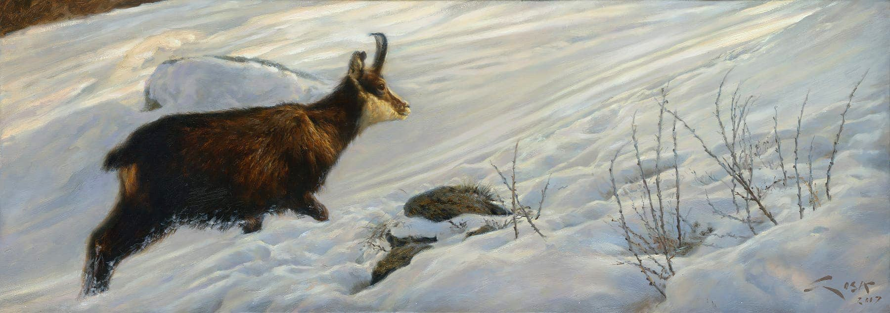 Painting of a Chamois in the snow