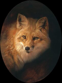 A fox painted in oil